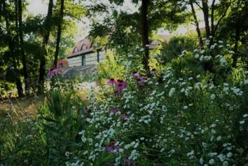 Bild Besucherzentrum Naturpark Dahme-Heideseen der Burg Storkow